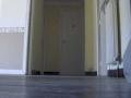 appartement-pour-location-t4-96-m2-bellegarde-sur-valserine-couloir-vue-2